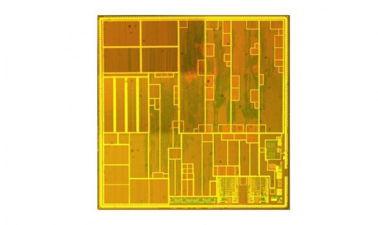 Microchip de múltiplos processadores de van de Burgwal