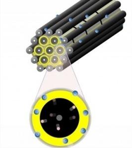 Estrutura da bateria de lítio-enxofre. Representação de Linda Nazar.