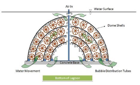 Sistema de funcionamento do Bio-dome