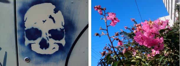 Fotos com a câmera do HTC Tattoo