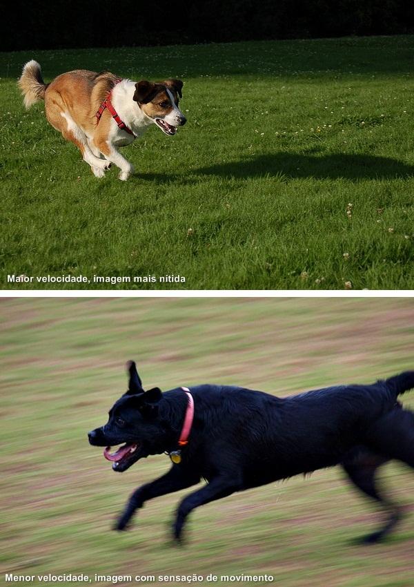 Ajustando a velocidade é possível deixar a imagem nítida ou com uma sensação de movimento