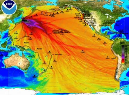 Amplitude das ondas durante o Tsunami