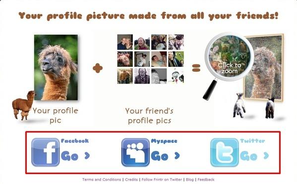 Escolha uma rede social
