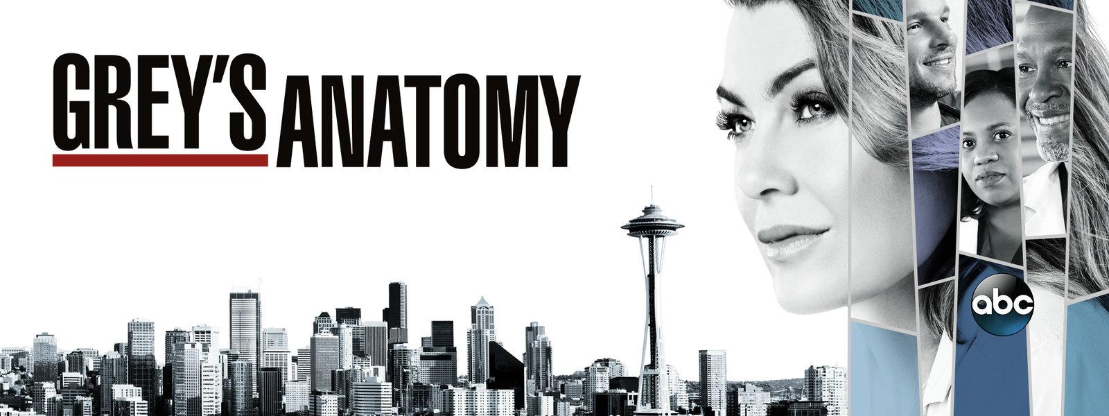 Você se lembra destes 30 atores participando de Grey's Anatomy?   Minha  Série