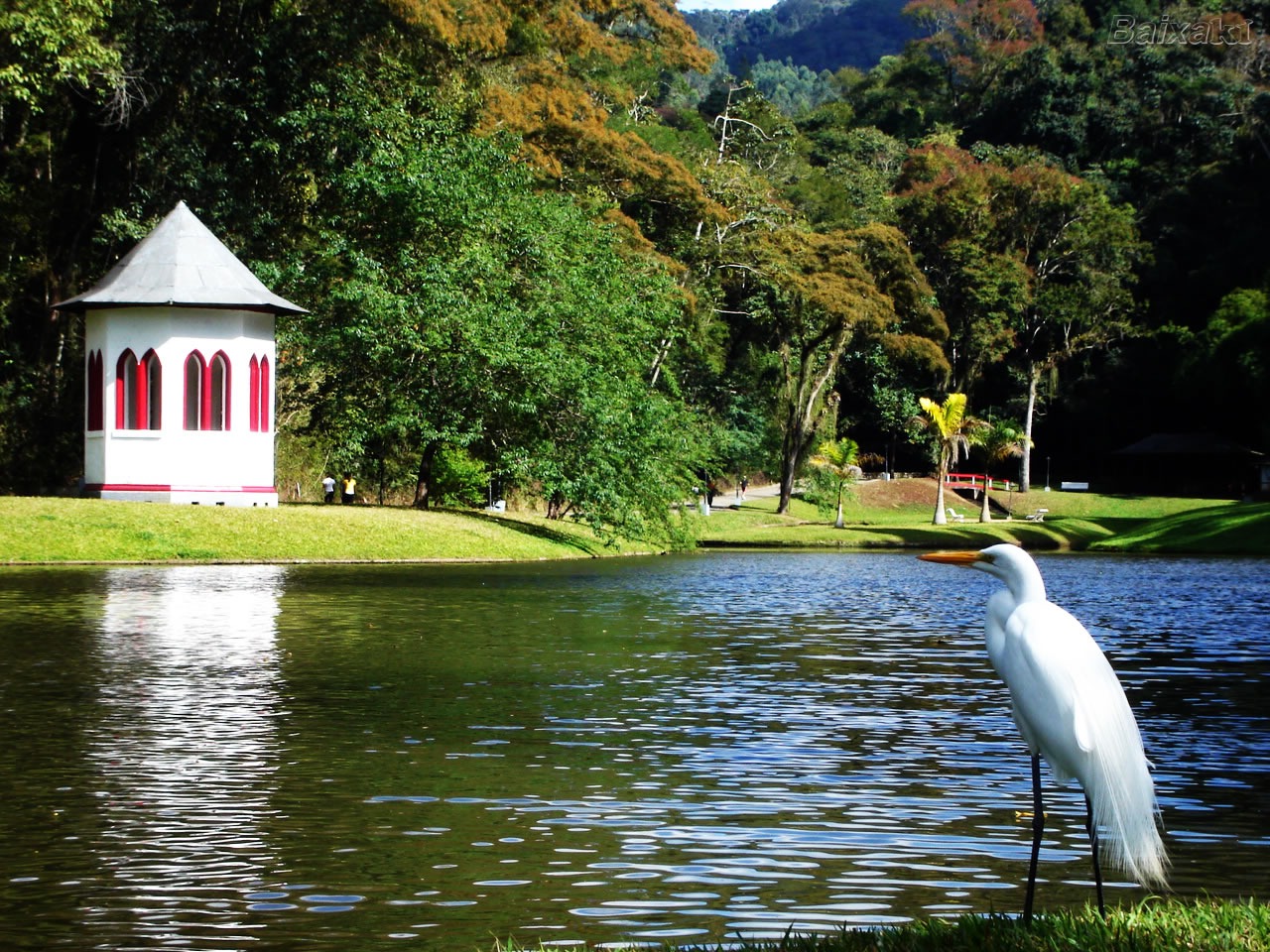 Country Club de Nova Friburgo